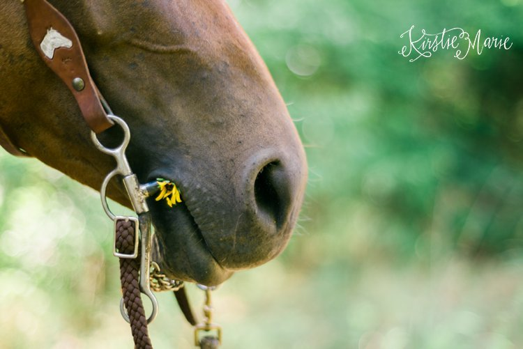 Kirstie Marie Photography_0392